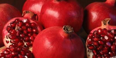 Сирия открыла поставки овощей и фруктов в Россию