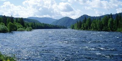 80% водоемов в России загрязнены