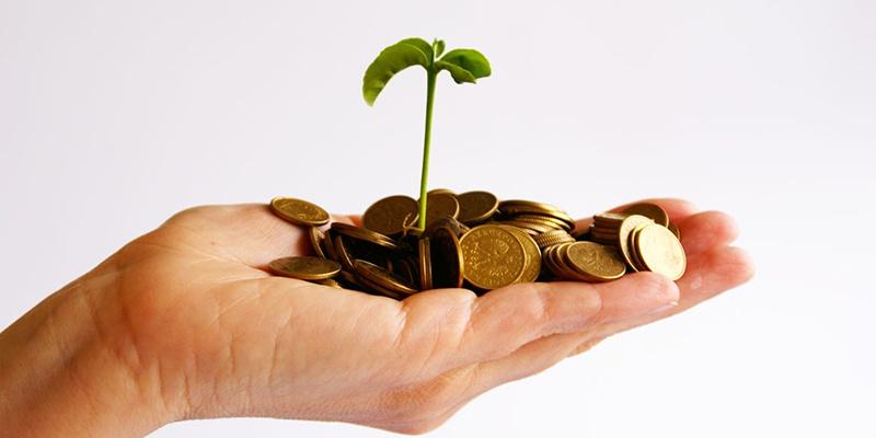 Минэкономразвития разработало программу поддержки малого и среднего бизнеса